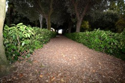percorso-verde2